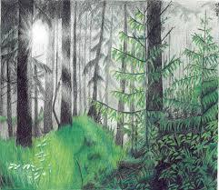 stepbystep landscape drawings coloured pencil of landscapes