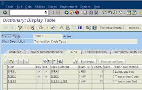 sap t code description table how to find out complete list of sap transaction codes in sap abap