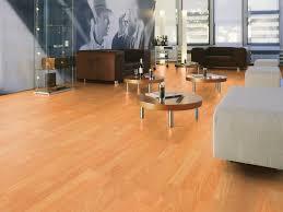 Orange Glo Laminate Floor Cleaner Mop And Glo On Laminate Wood Floors U2013 Meze Blog