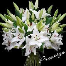 Sympathy Flowers Luxury Sympathy Flowers Faire Livrer Des Fleurs