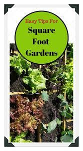 best 25 vegetable garden planner ideas on pinterest garden