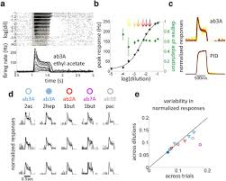 intensity invariant dynamics and odor specific latencies in