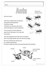 Halloween Comprehension Worksheets 59 Free Esl Insects Worksheets
