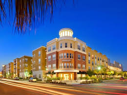 1 Bedroom Apartments Near Usf by Tampa Fl Pet Friendly Apartments U0026 Houses For Rent 471 Rentals