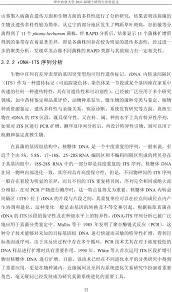 si鑒e social h m microsoft word 熊婉 doc pdf
