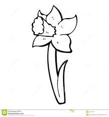 cartoon daffodil royalty free stock images image 37023379