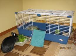 Indoor Hutches Cage Or Pen Indoors Or Outdoors Bunnymama