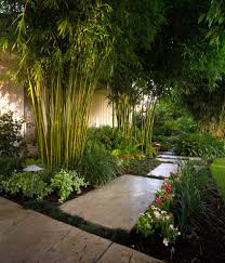 concrete backyard landscape tropical with stone pavers outdoor