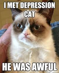 Depressed Cat Meme - i met depression cat meme cat planet cat planet