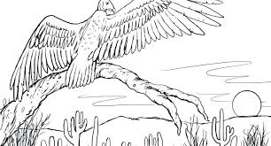desert owl coloring page desert coloring pages full screen download print picture desert