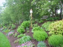 Backyard Easy Landscaping Ideas by Best 25 Backyard Hill Landscaping Ideas On Pinterest Sloped