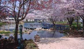 wedding venues columbus ohio outdoor wedding venues near columbus ohio cherry valley lodge