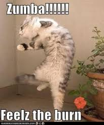 Funny Zumba Memes - funny zumba jokes wedding ideas