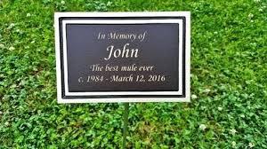 memorial plaques garden placque the coming king sculpture prayer garden plaque