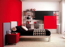 Bedroom Decorating Ideas For Young Man Single Woman Apartment Decorating Small Bedroom Ideas On Budget