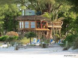 Real Treehouse Holmes Beach Tree House Built Right On The Beach In A Huge