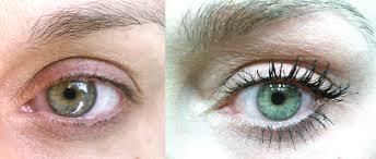 fysiko eyelash growth serum beauty and makeup news