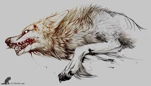 desperate wolf design best designs