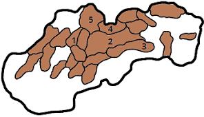 bartender resume template australia mapa slovenska pohoria a niziny pohoria2 png