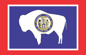 Excelsior Flag Your State Flag Stinks