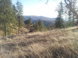 Henry Coe State Park Map by Ponderosa Loop Trail California Alltrails Com