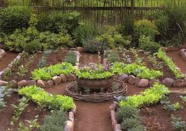 Kitchen Garden Designs 629 Best Allotment Images On Pinterest Gardening Vegetable