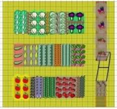 vegetable raised beds how many plants can you grow plans show 4