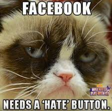 Best Grumpy Cat Memes - facebook needs a hate button funny grumpy cat meme picture