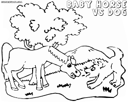 baby horse coloring pages coloring pages to download and print