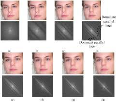 sensors free full text human age estimation method robust to