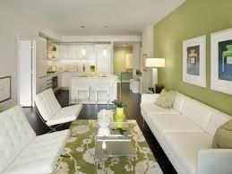 green livingroom www spacedesign us wp content uploads green living