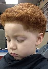 toddler boy faded curly hairsstyle redhead boy temp fade barbershop photograph boys haircut