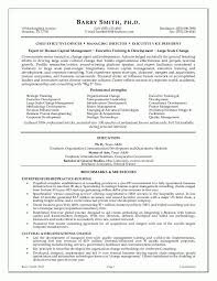 Recruiter Resume Example by Download Executive Resumes Haadyaooverbayresort Com