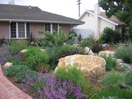 San Diego Landscape by What Is Your Landscape Water Use Surfrider Foundation San Diego