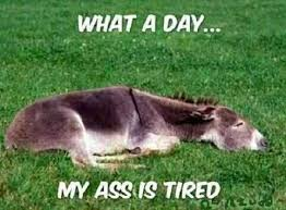 Long Ass Day Meme - deluxe long ass day meme funny quotes tired of work quotesgram