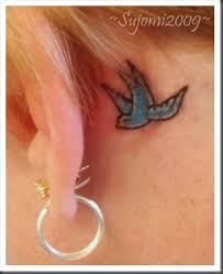 the 25 best bluebird tattoo ideas on pinterest finch tattoo