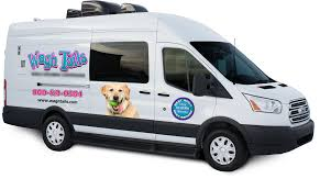 well pet 22 veterinary vehicle manufacturing by wag u0027n tails