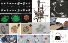 frontiers in mechanical engineering mechatronics