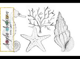 nautical sea life drawings how to draw starfish coral seahorse