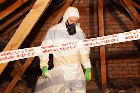 lead paint safety proper disposal of waste