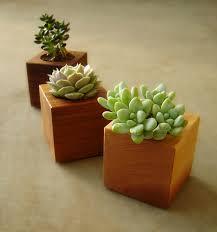 planters 2017 cool planters catalog cute pots for succulents