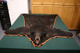 ideas fake bear rug with head fake bear skin rug faux