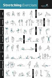 best 25 fitness posters ideas on pinterest mens fitness mens