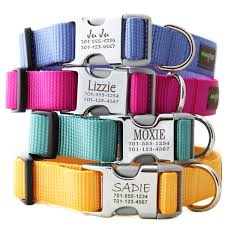 metal engraved buckle collar personalized with 21