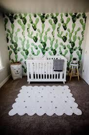 Nursery Stuff by Best 25 Cactus Decor Ideas On Pinterest Cactus Cactus Images