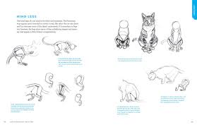 awesome cat position diagram images images for image wire
