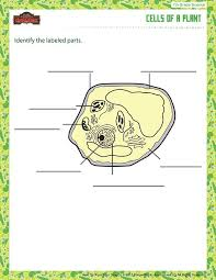112 best seventh grade printables images on pinterest