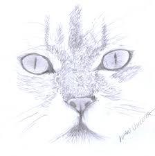 imagenes a lapiz de gatos gato a lapiz by ivanutrera on deviantart