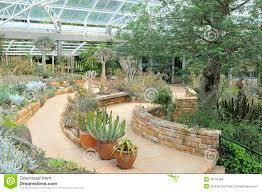 Kirstenbosch National Botanical Gardens by Conservatory At Kirstenbosch National Botanical Garden Editorial