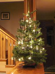pre lit tabletop christmas trees table designs